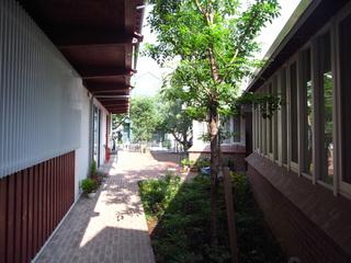 洲崎の町屋中庭
