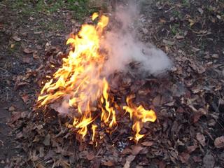 冬の焚き火